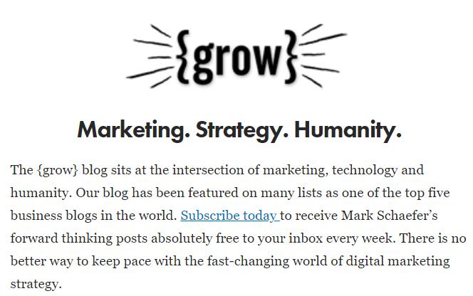 Content Marketing Newsletter - Grow by Mark Schaefer